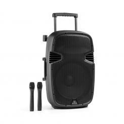 "Bushfunk 45 Aktiv-PA-Lautsprecher 900W Bluetooth Akku USB SD MP3 VHF 38 cm (15"")"