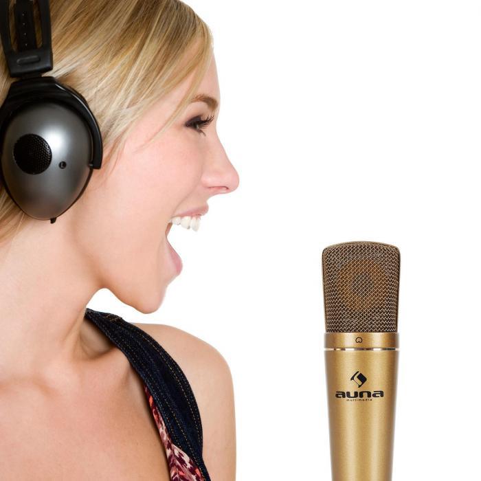 CM600 USB-Kondensator-Mikrofon bronze Studio Niere AD-Wandler